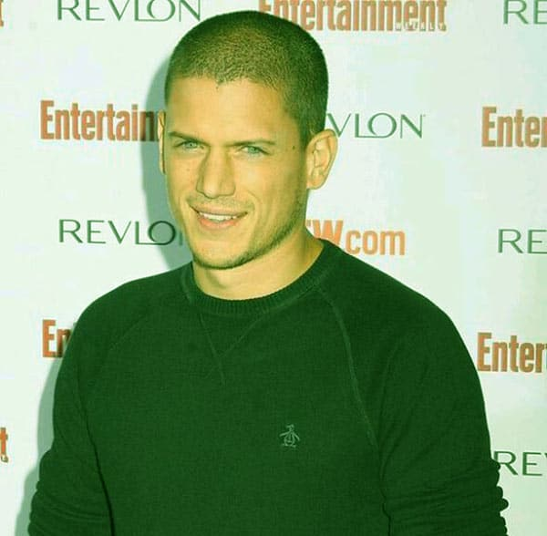 Image of British-American actor, Wentworth Miller